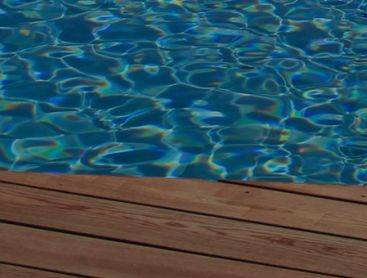 Biotop - Der Living Pool: Einheit von Ökologie und Design