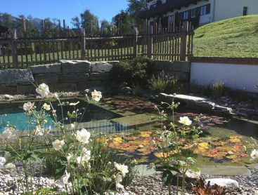 Bio-Pool in Kitzbühel in alpinen Stil