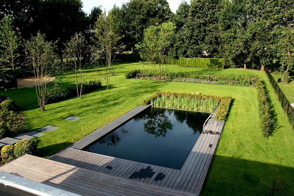 biotop - bio-pool mit geraden und klaren linien