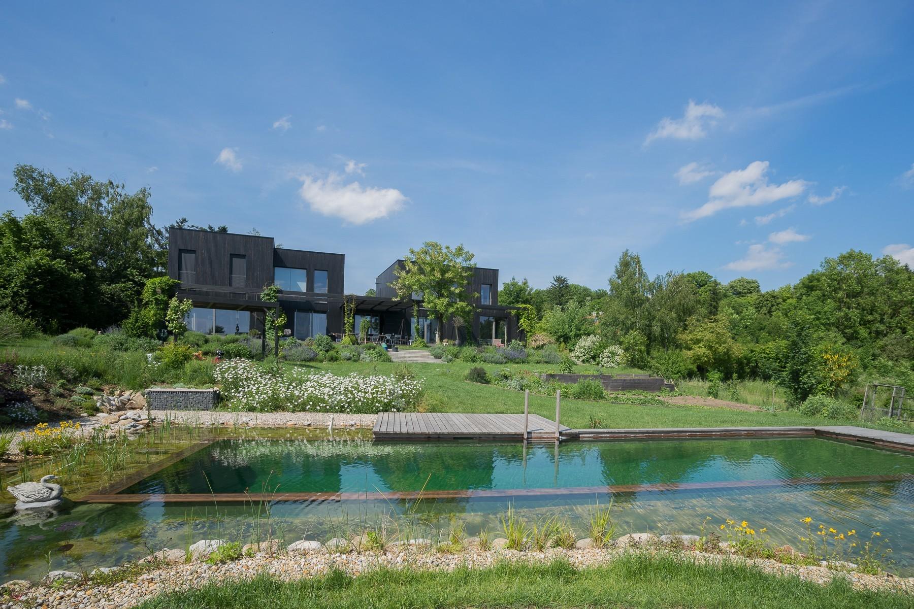 Biotop Ein Nat 220 Rlicher Swimming Teich Mit Blick In Den
