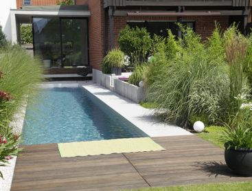 Schmaler Living-Pool im Paradies