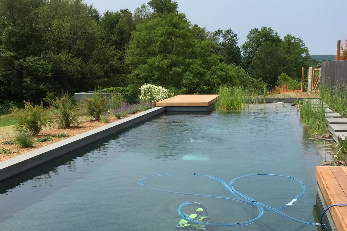 biotop nachhaltige einheit von schwimmteich und garten. Black Bedroom Furniture Sets. Home Design Ideas