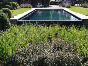 Biotop Converter System Einfacher Umbau Zum Bio Pool