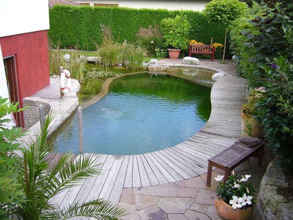 Biotop Bio Pools Naturteiche Schwimmteiche